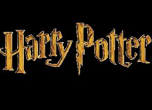 Harry Potter Super 3D Puzzles