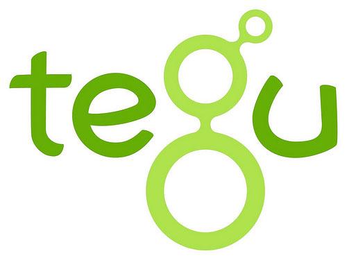 Tegu Magnetic Blocks | Tegu Block Sale - Mister Tody