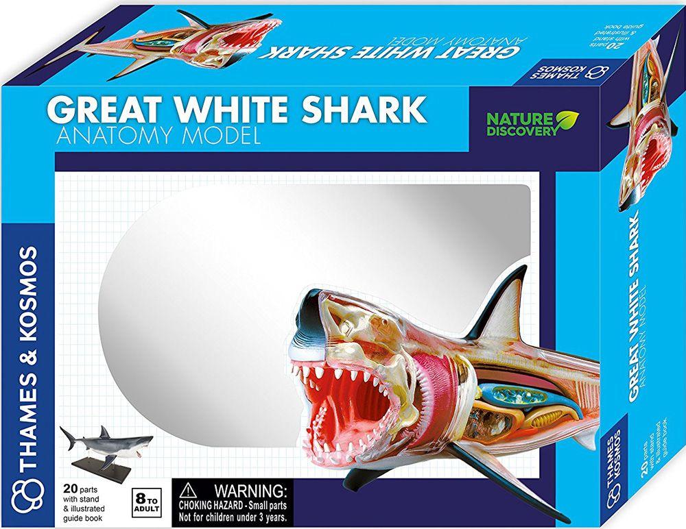 Thames and Kosmos Animal Anatomy -  Great White Shark