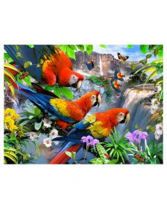 1000 piece Puzzle - Flight Of The Macaws