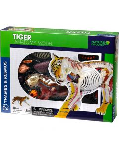 Thames and Kosmos Animal Anatomy - Tiger
