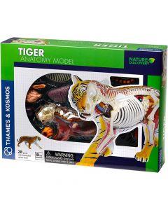 Thames and Kosmos Animal Anatomy - Tiger