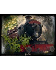 Harry Potter Super 3D Puzzle - Hogwarts Express