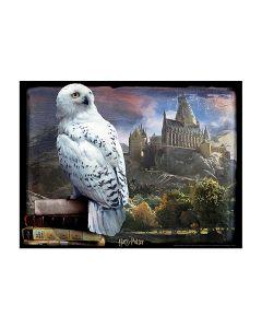 Harry Potter Super 3D Puzzle - Hedwig