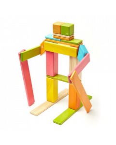 Tegu Magnetic 24-Piece Wooden Blocks Tints - save 20%