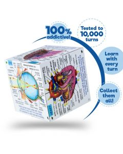 ZooBooKoo Human Body Stats Cube Book